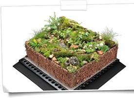 Biodiverse Systems